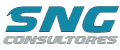 SNG Consultores